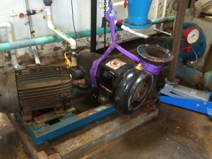 Removing pump and motor