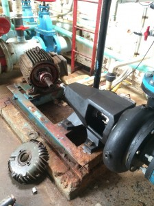 Motor with new bearings, cooling fan and fan shroud